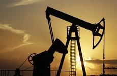 Giá dầu thế giới trải qua tháng tồi tệ nhất trong hơn 10 năm