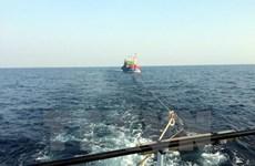 Các tàu cá và lao động bị nạn trên biển đã trở về bờ an toàn