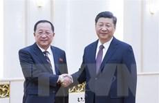 Chủ tịch Trung Quốc Tập Cận Bình tiếp Ngoại trưởng Triều Tiên