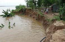 Quảng Ngãi: Sạt lở bờ sông Vệ, người dân thức trắng canh chừng lũ