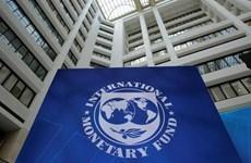 IMF dự báo kinh tế toàn cầu tăng trưởng 3,7% trong năm 2019