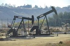 Mỹ sẽ thành nhà sản xuất dầu lớn nhất thế giới khi năm 2018 kết thúc