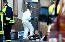 Cảnh sát Đức bắt giữ nghi can tấn công bằng dao tại Nuremberg
