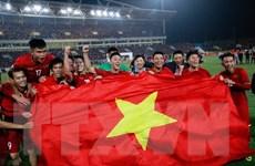 Hình ảnh khó quên trên sân Mỹ Đình khi Việt Nam vô địch AFF Cup