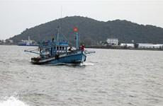 """Khắc phục """"thẻ vàng"""" IUU: Phát triển nghề cá theo thông lệ quốc tế"""