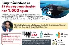 [Infographics] Sóng thần Indonesia: Số thương vong lên hơn 1.000 người