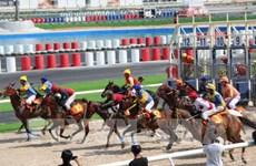Bổ sung dự án trường đua ngựa vào Quy hoạch thành phố Hà Nội