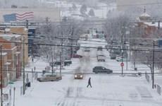 Bão tuyết hoành hành tại Mỹ, hàng nghìn chuyến bay phải hoãn, hủy