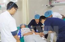Bệnh nhân 14 tuổi bị sốc phản vệ nặng, bất tỉnh do kiến đốt