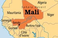 Đụng độ sắc tộc ở Mali, các thợ săn sát hại 33 người chăn thả gia súc