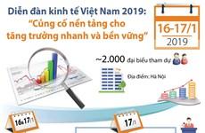 [Infographics] 2.000 đại biểu tham dự Diễn đàn kinh tế Việt Nam 2019