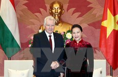 Việt Nam mong muốn Hungary ủng hộ, thúc đẩy việc phê chuẩn EVFTA