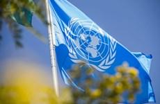'Bài sát hạch' đối với Liên hợp quốc ngay những ngày đầu Năm mới