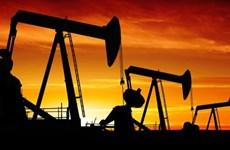 Giá dầu thế giới giảm do mối lo ngại về triển vọng kinh tế toàn cầu
