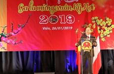 Đêm Gala mừng Xuân Kỷ Hợi của cộng đồng người Việt tại Cộng hòa Áo