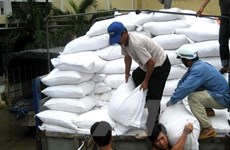 Xuất cấp hơn 700 tấn gạo cho 3 tỉnh trong dịp Tết Nguyên đán