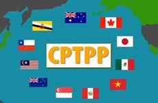 Đâu là những hoài nghi và lo lắng sai lầm về Hiệp định CPTPP?