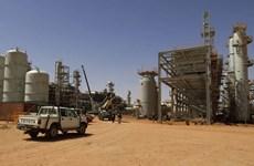 Algeria sẽ đối mặt với khủng hoảng kinh tế trong năm 2019?