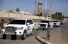 Bước tiến sơ bộ trong đàm phán thực thi thỏa thuận ngừng bắn ở Yemen