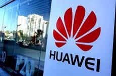 Đức làm gì để đối phó với 'con mắt tò mò' của tập đoàn Huawei?