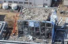 Nhật sử dụng robot kiểm tra nhiên liệu phóng xạ tại nhà máy Fukushima