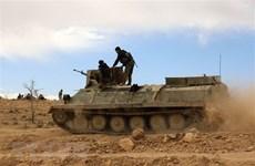 Tổng thống Pháp và Nga điện đàm về tình hình Syria và Ukraine