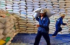 Doanh nghiệp Trung Quốc tìm hiểu đầu tư và nhập khẩu nông sản Việt