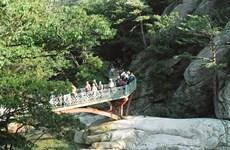 Hàn Quốc bác bỏ thông tin về đề xuất trả phí du lịch cho Triều Tiên