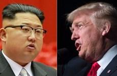Tổng thống Donald Trump đặt cược vào thượng đỉnh Mỹ-Triều lần hai