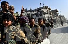 Nhóm vũ trang người Kurd ở Syria tiếp tục sơ tán dân khỏi Baghouz
