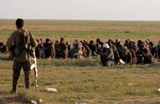Chuyển giao 280 phiến quân IS bị bắt tại Syria cho Bộ Nội vụ Iraq