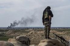 Pháp chuẩn bị kịch bản hồi hương các công dân từng tham chiến cho IS