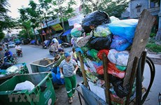 Chưa có loại bao bì tiện lợi thay thế túi nilon ở Việt Nam