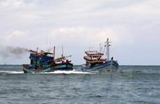 Vụ hai cha con rơi xuống biển ở Hà Tĩnh: Đã tìm thấy thi thể người con