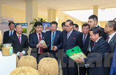 Đoàn Đảng Lao động Triều Tiên thăm Viện Khoa học Nông nghiệp