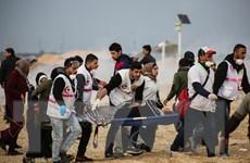 Mỹ và Qatar thảo luận kế hoạch giải quyết xung đột Israel-Palestine