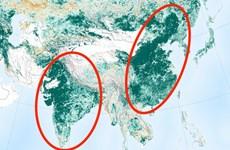 """Trái Đất """"xanh"""" hơn 20 năm trước nhờ nỗ lực của Trung Quốc và Ấn Độ"""