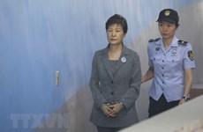 Đảng Hàn Quốc Tự do kêu gọi ân xá cho cựu Tổng thống Park Geun-hye