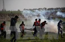 Israel điều tra vụ binh sỹ bắn chết 11 người Palestine ở Gaza