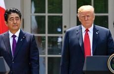 Vấn đề Triều Tiên và thương mại là trọng tâm của cuộc gặp Mỹ-Nhật