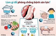 [Infographics] Cần làm gì để phòng chống bệnh sán lợn?