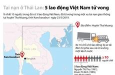 [Infographics] Tai nạn ở Thái Lan, 5 lao động Việt Nam tử vong