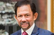 Quốc vương Brunei Darussalam bắt đầu thăm cấp Nhà nước tới Việt Nam