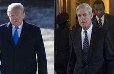 Năm câu hỏi khó trả lời về bản tóm tắt báo cáo của ông Mueller