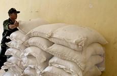 Biên phòng An Giang bắt giữ 5 tấn đường cát nhập lậu từ Campuchia