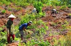 Thanh tra việc sử dụng đất có nguồn gốc từ nông, lâm trường