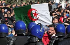 Tấn công bằng dao ở thủ đô của Algeria, 6 nghi phạm bị bắt giữ
