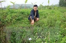 Công khai phương án đền bù vùng ảnh hưởng của bãi rác Nam Sơn