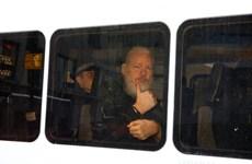 Cộng sự của ông Julian Assange không được phép gặp luật sư