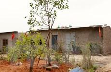 Xử lý vi phạm xây dựng trái phép trên đất ven bờ vịnh Bái Tử Long